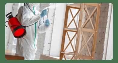 Pest Sanitization Services in Lara
